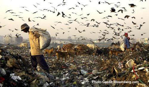 Trashdumpindia